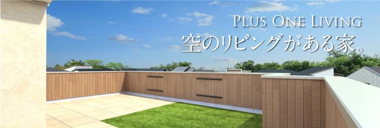 Plus One Living 空のリビングがある家。